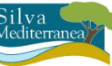 Silva Mediterranea-  FAO Akdeniz Ormancılığı Meseleleri Komitesi