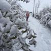 Kar Eğlencesi