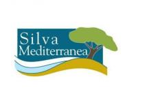 Silva Mediterranea Büro Toplantısı-15 Temmuz 2019 Roma