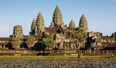 Kamboçya ve Orman Sektörü/Türkiye'nin Yapabilecekleri